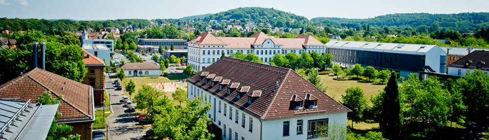 IIWM Institut für Immobilienwirtschaft und -management